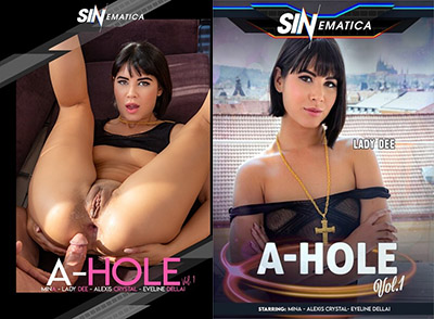 A-Hole Vol. 1